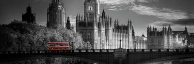 London Bus V