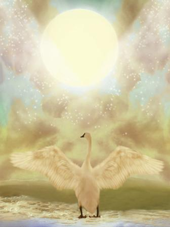 Swan by justdd