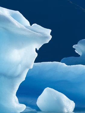 Icebergs Floating in Alsek Lake. Glacier Bay National Park, Ak. by Justin Bailie