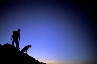 Man and Dog Backpacking Near Lake Tahoe, California