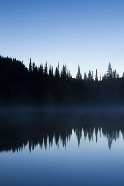 Reflection Lake. Mt. Rainier National Park, WA by Justin Bailie