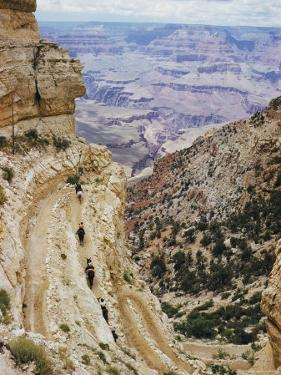 A Muleback Party Comes up the Kaibab Trail by Justin Locke
