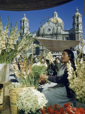 Woman Sells Flowers in Plaza Near Our Lady of Guadalupe Church by Justin Locke