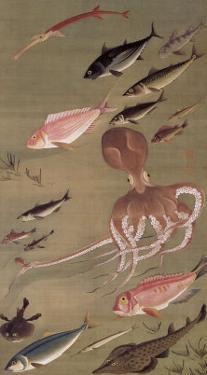 Fish Athletic Meeting by Jyakuchu Ito