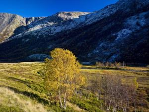 Norway, Dovre, Fall on Grimsdalselva River by K. Schlierbach