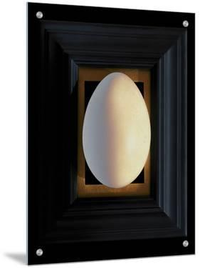Large White Egg Centered on a Black Frame with Gold Leaf Mat by K.T.