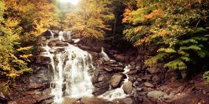 Kaaterskill Falls Stream Through the Forest of the Catskill Mountains, New York State, USA