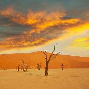 Death Valley by Kamchatka