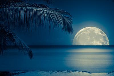 Beautiful Full Moon Reflected on the Calm Water of a Tropical Beach (Toned in Blue) by Kamira