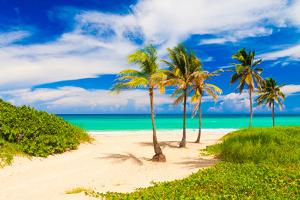 Beautiful Tropical Beach in Cuba by Kamira