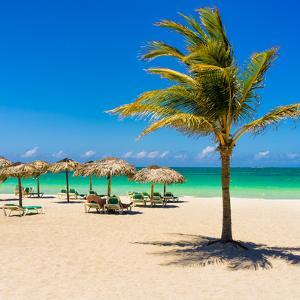View of Varadero Beach in Cuba with a Coconut Tree, Umbrellas and a Beautiful Turquoise Ocean by Kamira