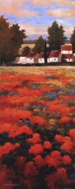 Tejados Rojos I by Kanayo Ede