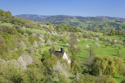 https://imgc.allpostersimages.com/img/posters/kapelle-berghausen-ebringen-markgraefler-land-southern-black-forest-baden-wurttemberg-germany_u-L-Q1EY3PC0.jpg?artPerspective=n