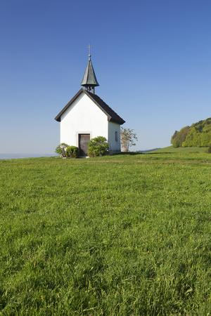 https://imgc.allpostersimages.com/img/posters/kapelle-saalenberg-soelden-markgraefler-land-southern-black-forest-baden-wurttemberg-germany_u-L-Q1EY4ZY0.jpg?artPerspective=n