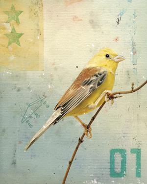 Bird I by Kareem Rizk