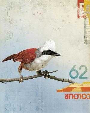 Bird III by Kareem Rizk