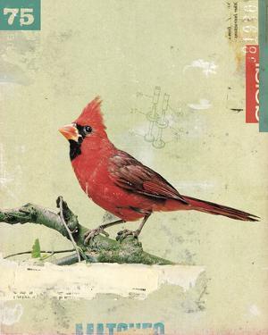 Bird IV by Kareem Rizk