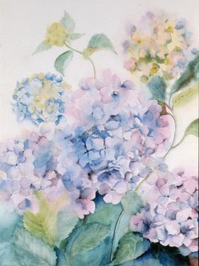 Hydrangea, Blue Wave I by Karen Armitage