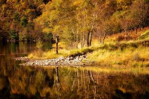 Autumn in the Scottish Highlands, Scotland, United Kingdom, Europe by Karen Deakin
