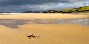 Beach, Isle of Harris, Outer Hebrides, Scotland, United Kingdom, Europe by Karen Deakin