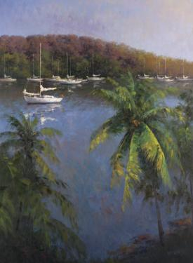 Caribbean Lagoon by Karen Dupré