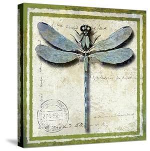 Dragonfly by Karen J^ Williams