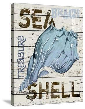 Sea Shell Blue by Karen J^ Williams