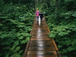 Two Children Walk Along a Wooden Walkway in the Rain by Karen Kasmauski