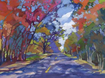 The Long Way Home by Karen Mathison Schmidt