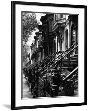Stoops on 19th Century Brooklyn Row Houses by Karen Tweedy-Holmes