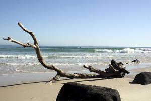 Australia 2 by Karen Williams