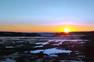Australian Sunrise by Karen Williams