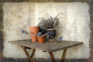 Clay Pots 7B by Karen Williams