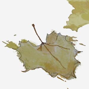 Fall Leaf 2 by Karen Williams