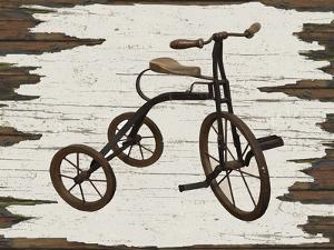Vintage Bicycle by Karen Williams