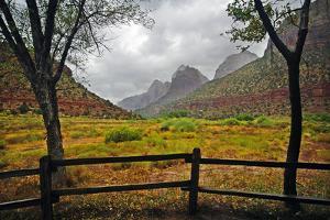 Zion National Park by Kari Siren