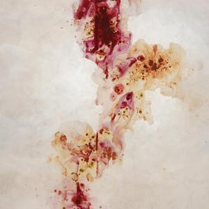 Raspberry Stones by Kari Taylor