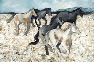 Salt River Wild by Kari Taylor