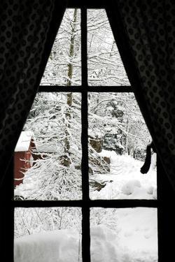 Winter Window by Karimala