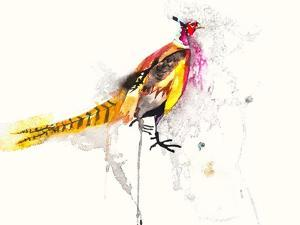Pheasant by Karin Johannesson