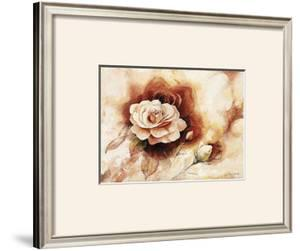 Rose Shadow II by Karin Valk