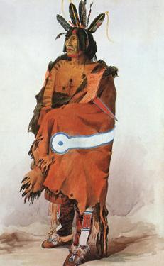 Pachtuwa-Chta, an Arikara Warrior, 1833 by Karl Bodmer