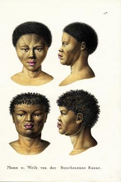 Bushmen, 1824 by Karl Joseph Brodtmann