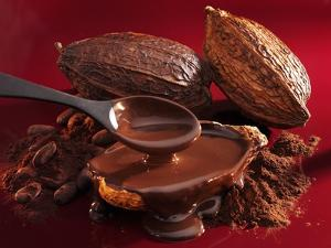 Chocolate Sauce, Cocoa Powder, Cocoa Beans and Cacao Fruits by Karl Newedel