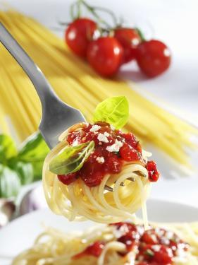 Spaghetti with Tomato Sauce on a Fork by Karl Newedel