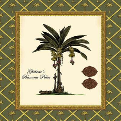 Ghiberie's Banana Palm