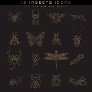 Set of Vintage Thin Line Insects Icons. Retro Vector Design Labels, Badges, Graphic Element, Emblem by karnoff
