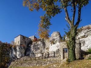 Bakowiec Castle in Morsko, Trail of the Eagles' Nests, Krakow-Czestochowa Upland, Poland by Karol Kozlowski