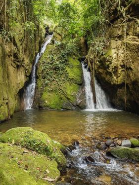 Cachoeira Indiana Jones, waterfall in Boa Esperanca de Cima, Nova Friburgo Municipality, State of R by Karol Kozlowski