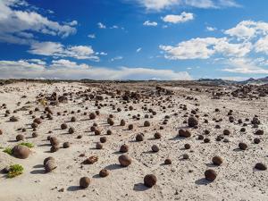 Cancha de bochas (Bowls Pitch) Formation, Ischigualasto Provincial Park, UNESCO World Heritage Site by Karol Kozlowski